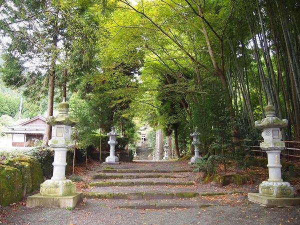 国造神社参道