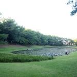 みそぎ池(宮崎県宮崎市)