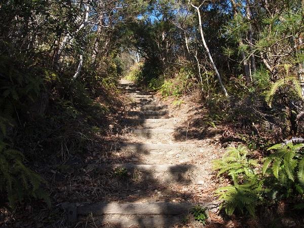 矢岳登山道1