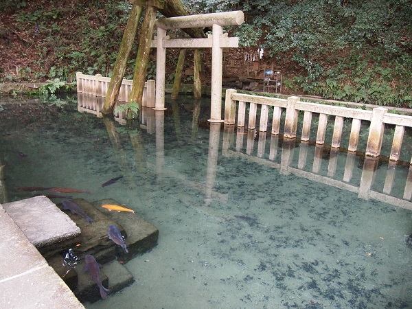鹿島神宮禊池