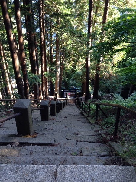 大山阿夫利神社奥の院鳥居から
