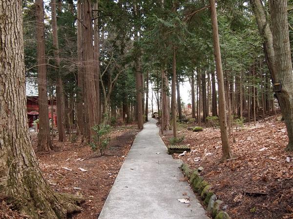 富士山東口本宮浅間神社境内3