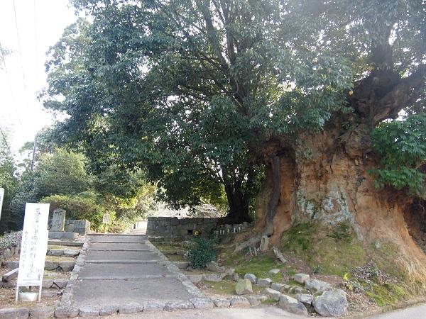 山の辺の道長岳寺入り口