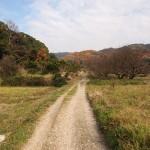 山の辺の道(奈良県天理市~桜井市)