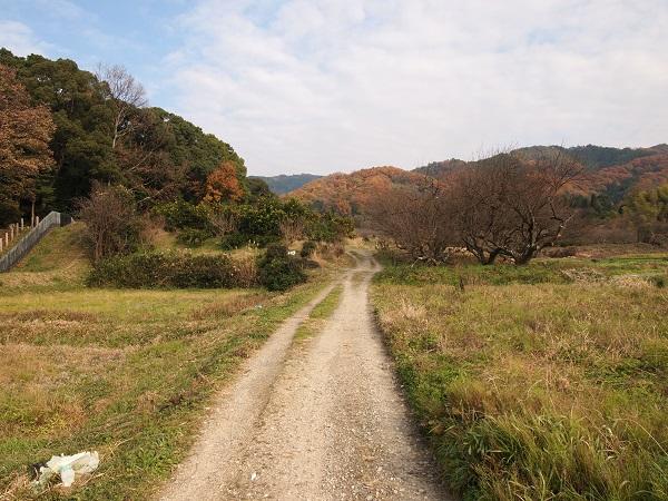 山の辺の道22