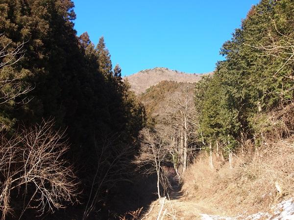 軍刀利神社奥ノ院への参道