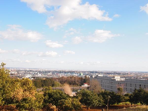比々多神社元宮から横浜市街