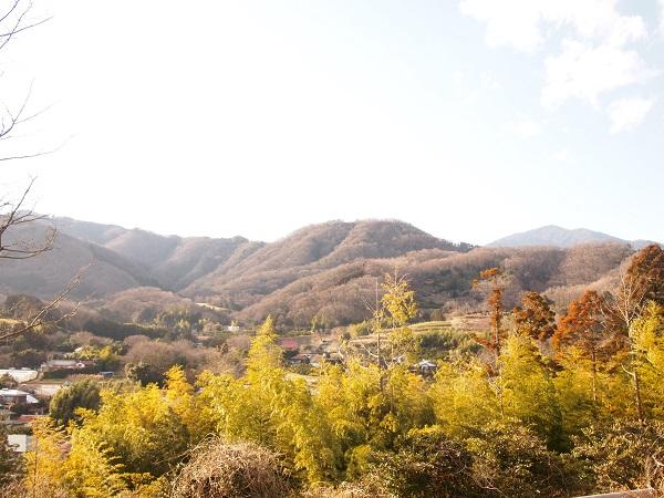 比々多神社元宮から大山