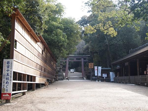 kasuga-shrine1