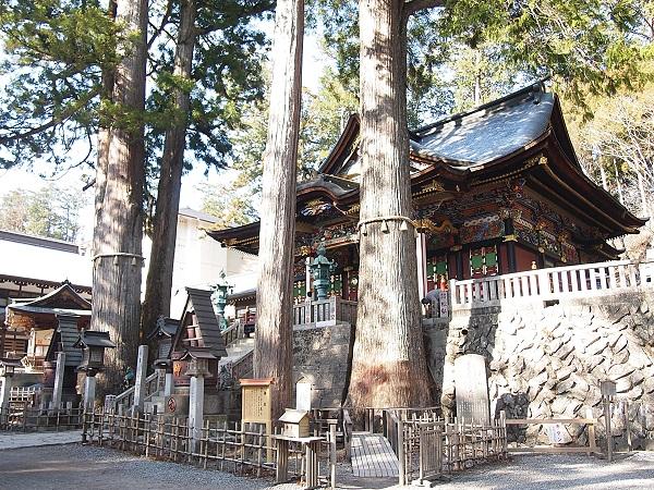 三峰神社御神木