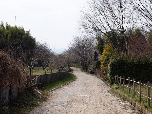 檜原神青垣の風景3