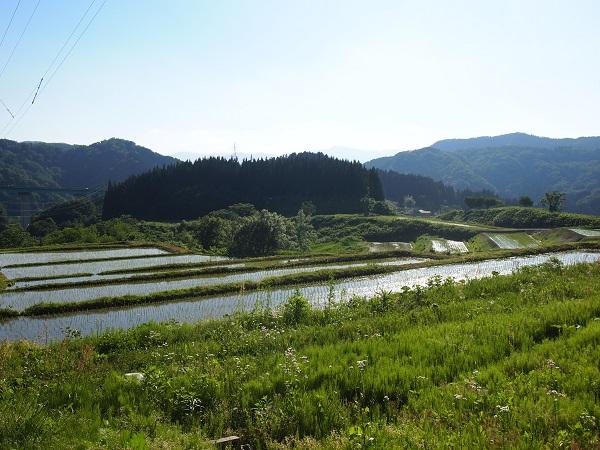 大日坊周辺景色