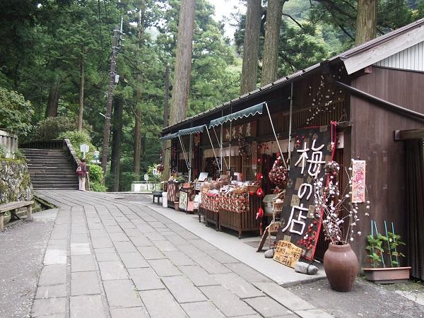 榛名神社 梅の店