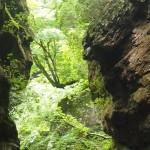 神戸岩 / 大嶽神社(東京都檜原村)
