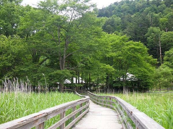 日光山温泉寺遊歩道