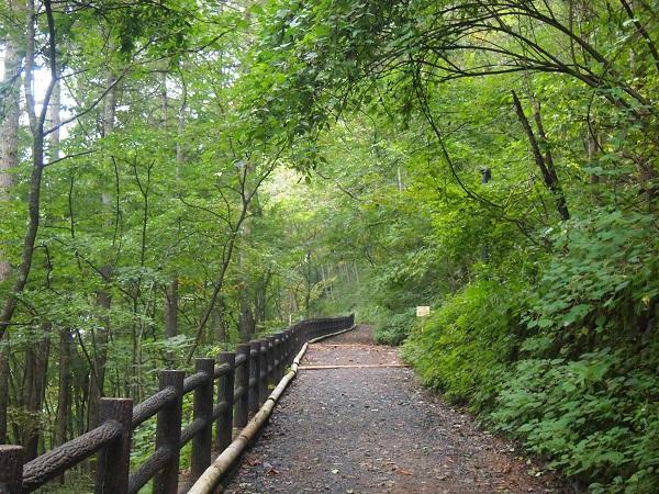 三頭大滝遊歩道3