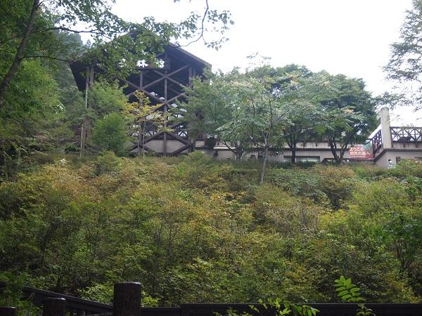 三頭大滝森林館