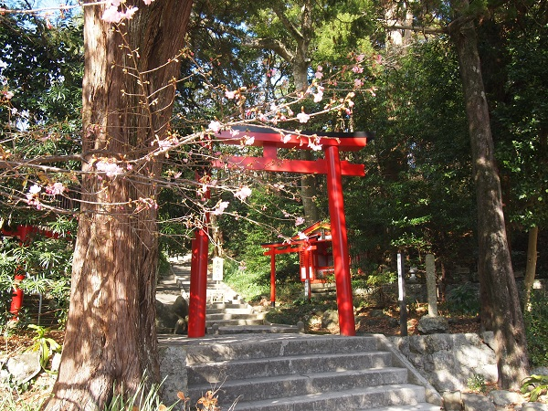 白浜神社本殿へ向かう参道